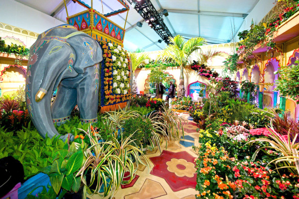 Macys Flower Show 2020.Everything About Macy S Flower Show In Nyc 2020