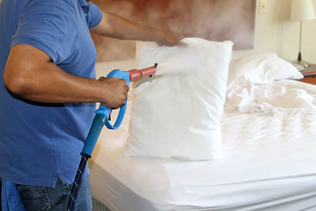 Best Bed Bug Exterminator in New York City