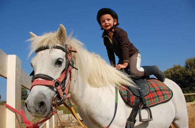 Best Horse Riding Schools in New York City