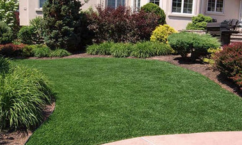 Best Places to Buy Artificial Grass in NYC
