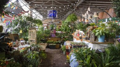 Photo of Best Plant Stores in New York City