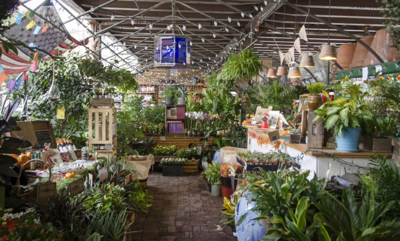 Best Plant Stores in New York City