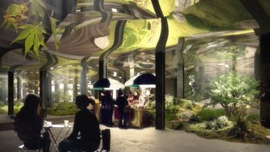 Photo of The Lowline Lab in New York City: Facts You Should Know